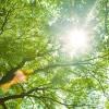 紫外線UVAが最大量!5月の紫外線にはご用心